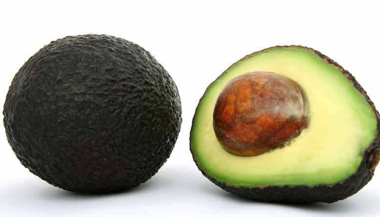 avocado groente of fruit