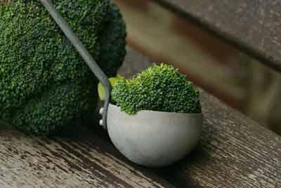 broccoli stimuleert het metabolisme