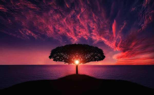 natuur zonsondergang