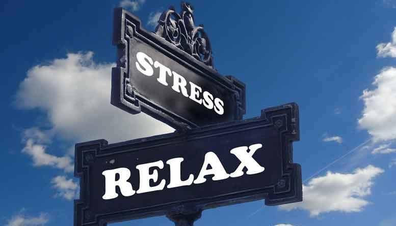 welke kruiden helpen tegen stress