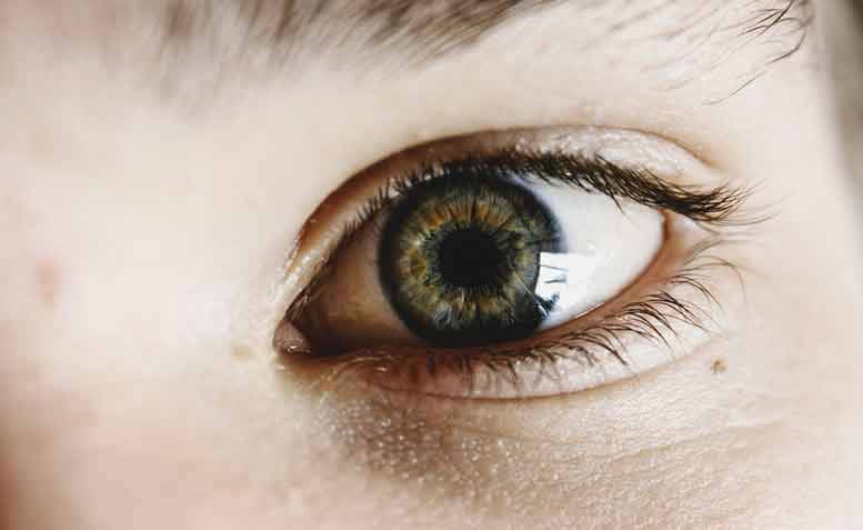welke kruiden zijn goed voor de ogen