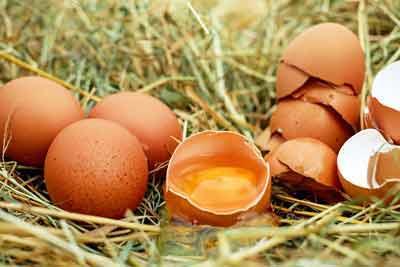 eieren vitamine d rijk