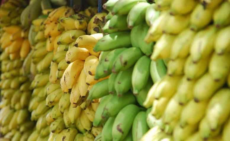 afvallen met bananen