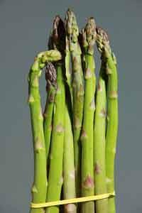 asparagus voor zwangere vrouwen