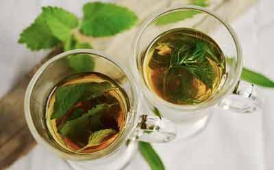 metabolisme versnellen thee