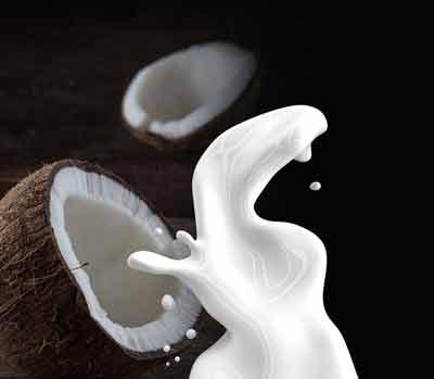 kokosolie cholesterolverlagende voeding