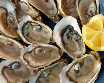 oesters rijk aan zink