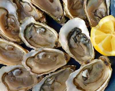 oesters bevatten het meeste zink
