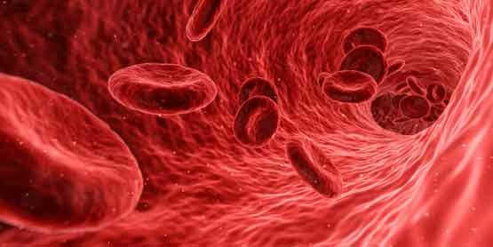 rode bloedcellen ijzertekort