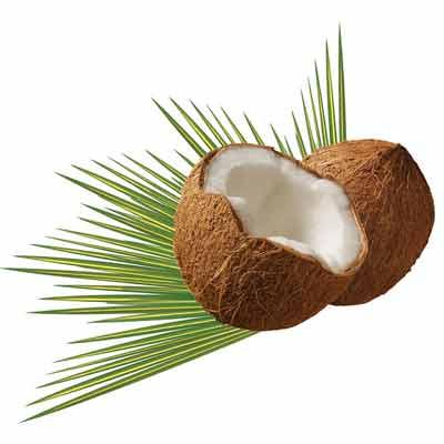 kokosnoot gezondheid
