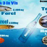 Omega 3 Voordelen en Voedingslijst
