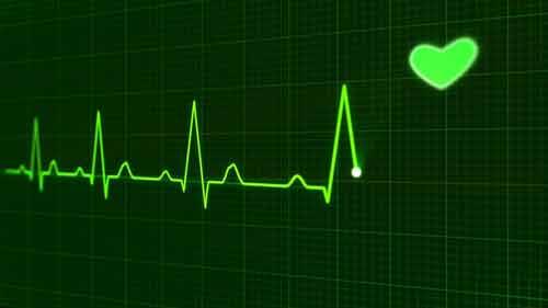 hartziekten voorkomen meidoorn