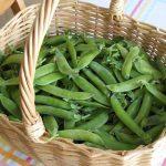 Moeten vegetariërs ijzertabletten gebruiken? Kans op ijzertekort