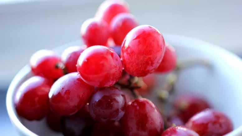 Waar Vinden We Resveratrol In Voeding?