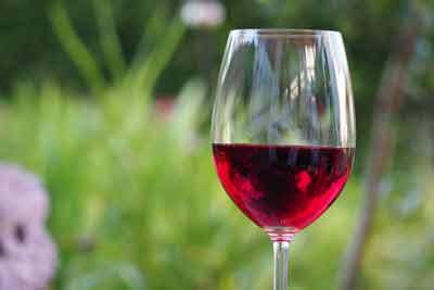 rode wijn resveratrol