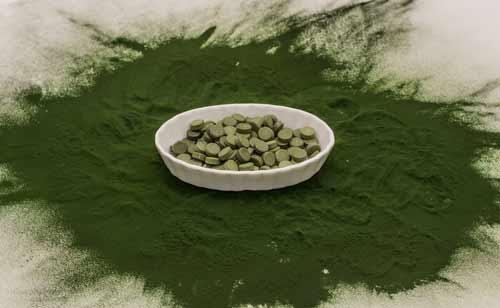 chlorella voedingswaarde