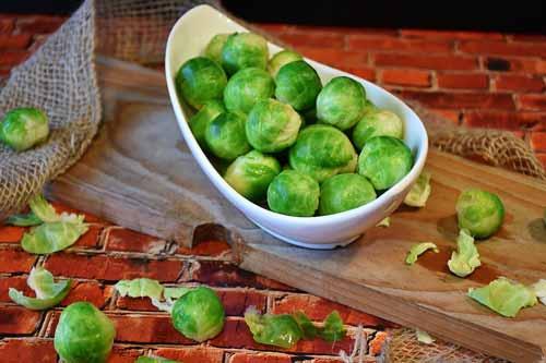 spruiten plantaardige omega 3