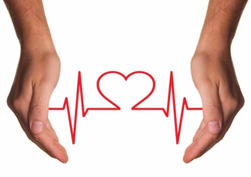 lijnzaadolie hart