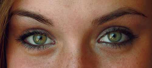 ogen luteine