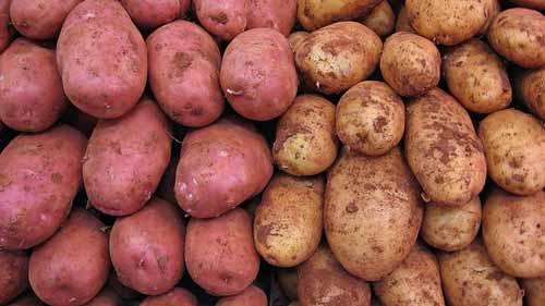voedingswaarde aardappelen