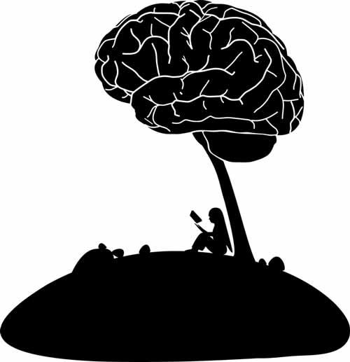 hersenen beschermen mariadistel