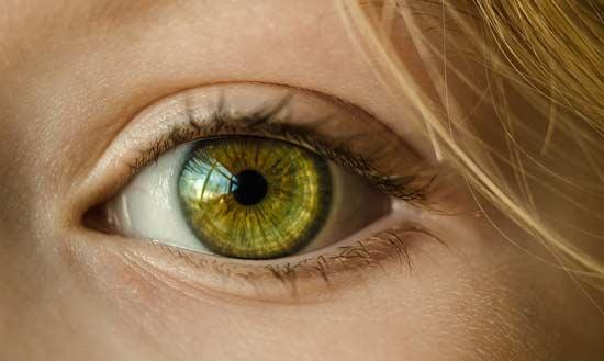 vitamine e ogen