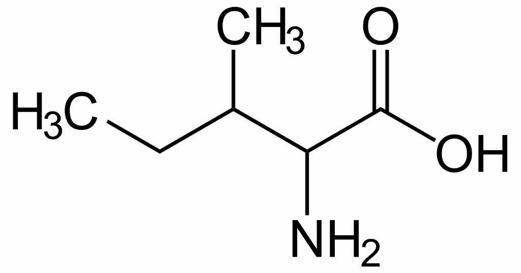Isoleucine | Werking En Bijwerkingen Van Aminozuren